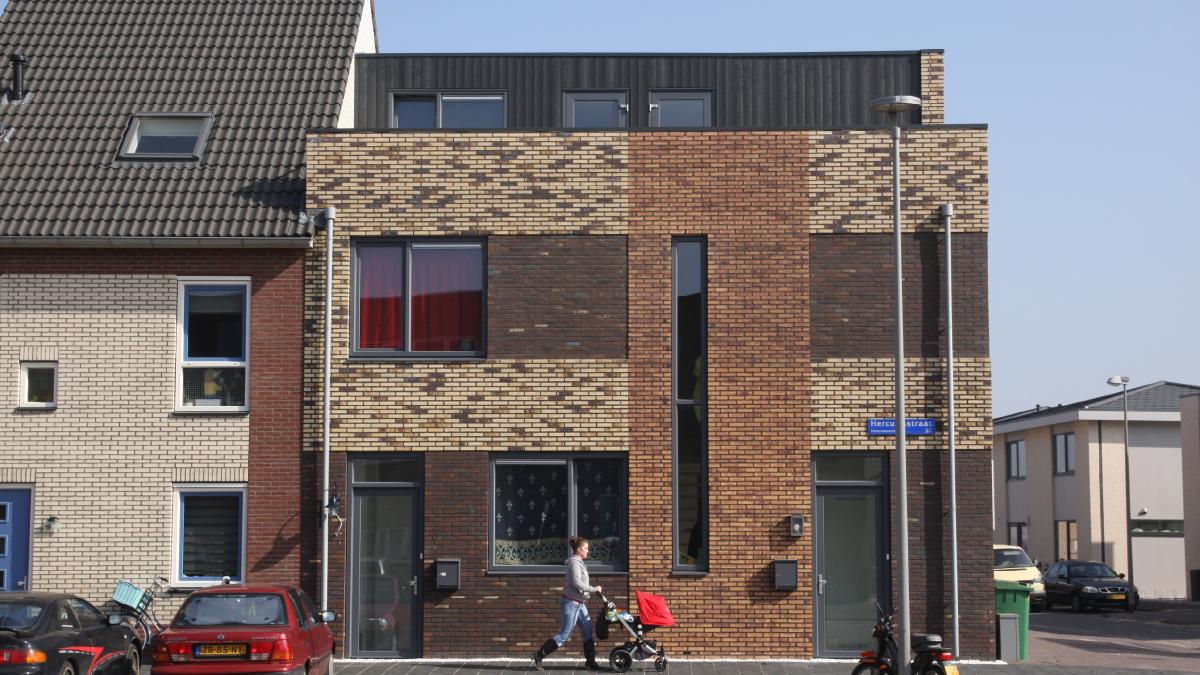 wok_project-dwg_michiel_de_wit_architect_1