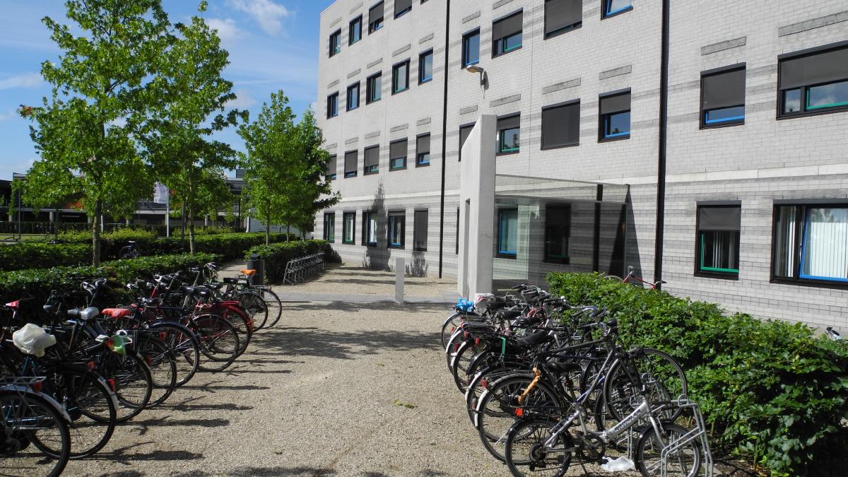 Project.DWG - Helder & vanzelfsprekend